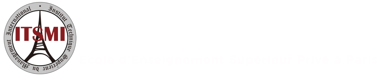 ITSMI Logo